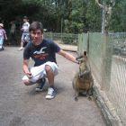 Il canguro terrorizzato da Simo